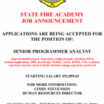 Job Vacancy – Senior Programmer Analyst
